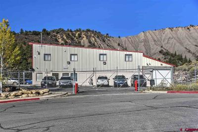 Durango, Bayfield, Cortez, Telluride Commercial For Sale: 799 Tech Center Drive #A