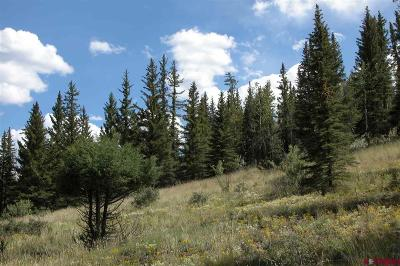 Creede Residential Lots & Land For Sale: Molly S Drive