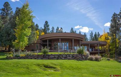 La Plata County Single Family Home For Sale: 6636 County Road 250