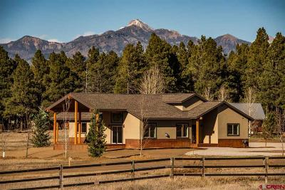 Pagosa Springs Single Family Home For Sale: 1370 Antelope Avenue