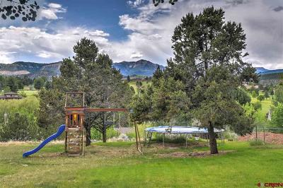 Durango Single Family Home For Sale: 203 Hillcrest Drive