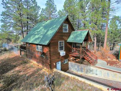 Pagosa Springs Single Family Home For Sale: 110 Dyke Circle