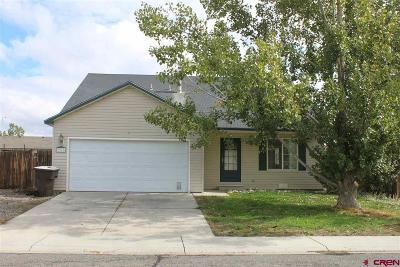 Montrose Single Family Home UC/Contingent/Call LB: 1968 Sara E Lane