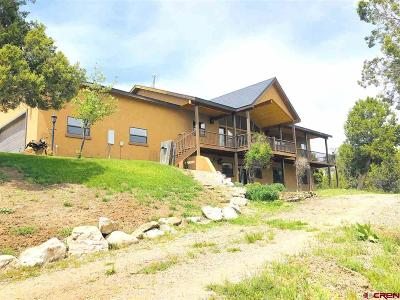 La Plata County Single Family Home For Sale: 8311 County Road 510