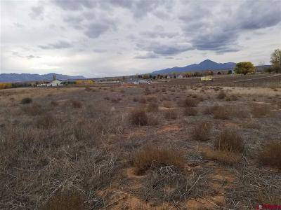 Cortez Residential Lots & Land For Sale: 13884 26 Road