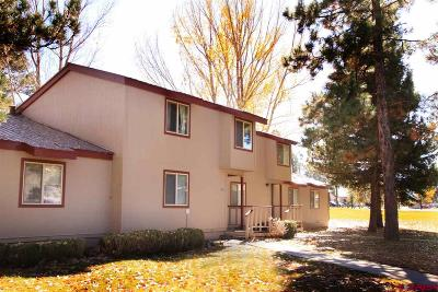 Pagosa Springs Condo/Townhouse For Sale: 217 Pinon Causeway #3018