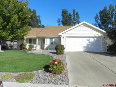 Montrose Single Family Home For Sale: 1063 Deer Trail Road