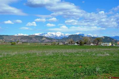 Durango Residential Lots & Land For Sale: 212 Entrada Del Sol