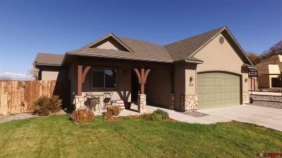 Montrose Single Family Home For Sale: 559 Opal Drive
