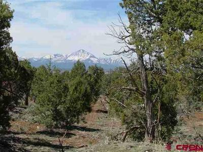 Mancos Residential Lots & Land For Sale: 13125 Road 30.5