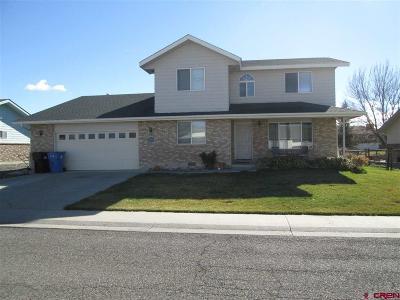 Montrose Single Family Home For Sale: 2040 Princeton Way