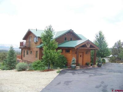 Mancos Single Family Home For Sale: 10266 Road 35