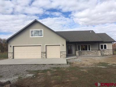 Montrose Single Family Home For Sale: 63095 Opossum Lane