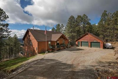 La Plata County Single Family Home For Sale: 358 Hilltop