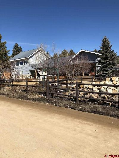 Pagosa Springs Single Family Home For Sale: 31 Cactus Drive