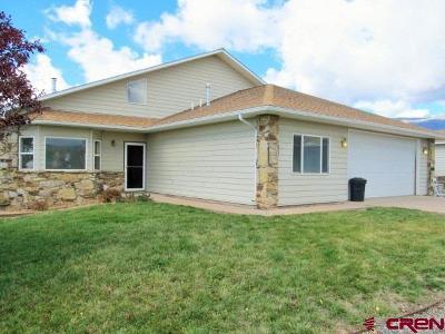 Cedaredge Single Family Home For Sale: 22869 Thunder Mountain Lane