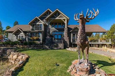 Pagosa Springs Single Family Home For Sale: 171 S Squaw Canyon Place