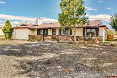 Montrose Single Family Home For Sale: 12638 5875 Road