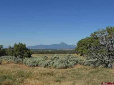 Mancos Residential Lots & Land For Sale: 13100 Road 30.5 Loop