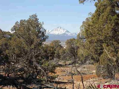Mancos Residential Lots & Land For Sale: 30440 Road M.9