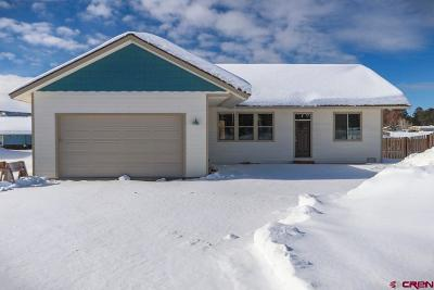 Pagosa Springs Single Family Home For Sale: 404 Vista Boulevard
