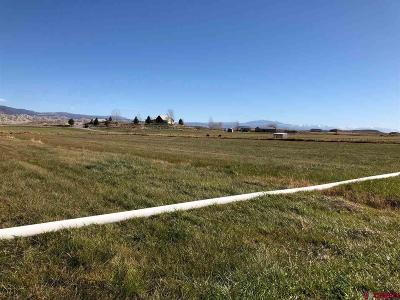 Montrose Residential Lots & Land UC/Contingent/Call LB: 61751 Grand View Court