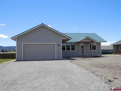 Pagosa Springs Single Family Home For Sale: 374 Vista Boulevard