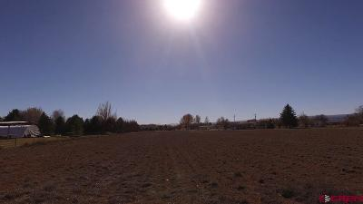 Montrose Residential Lots & Land For Sale: 62787 Highway 90 Highway