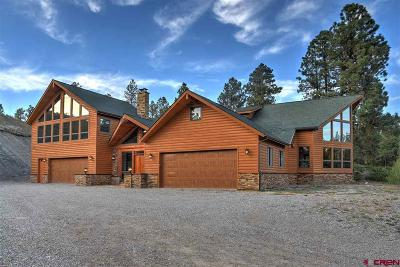 La Plata County Single Family Home For Sale: 47579 Hwy 160