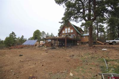 Pagosa Springs Single Family Home For Sale: 112 Beverly Court