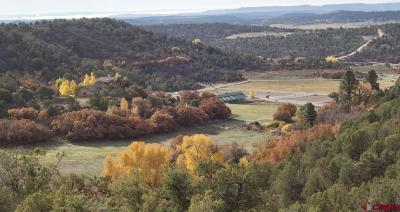 La Plata County Single Family Home For Sale: 38721 Us Highway 160 #KMS Farm