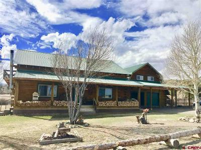 South Fork Single Family Home For Sale: 243 Ouray Road
