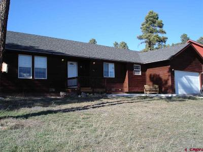 Pagosa Springs Single Family Home For Sale: 16 Putter Court