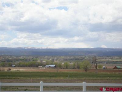 Montrose CO Residential Lots & Land For Sale: $99,950