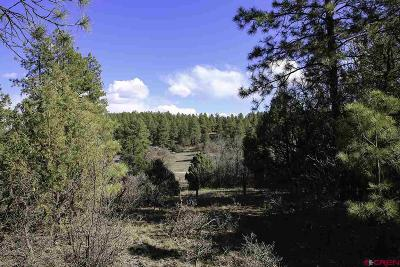Durango Residential Lots & Land For Sale: 160 Deer Trail