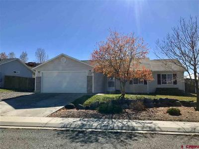 Montrose Single Family Home UC/Contingent/Call LB: 1524 Branding Iron Drive