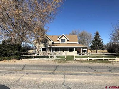 Montrose County Single Family Home For Sale: 52841 Banner Road