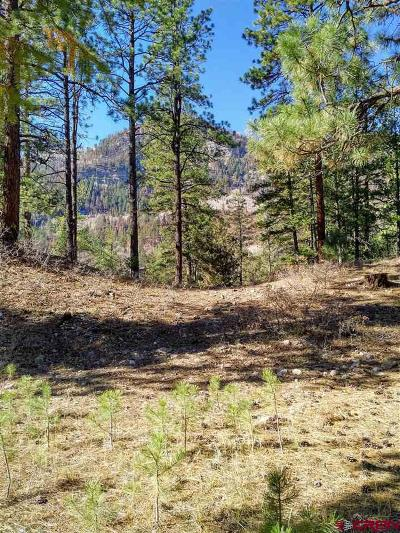 Durango Residential Lots & Land For Sale: 242 Glacier Cliff