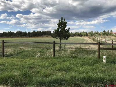 Mancos Residential Lots & Land For Sale: Road 39