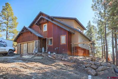 Pagosa Springs Single Family Home For Sale: 94 Handicap Avenue