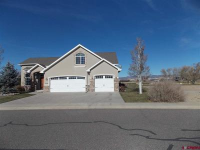 Montrose Single Family Home For Sale: 3825 Grand Mesa Drive