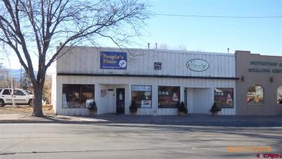 Cortez Commercial For Sale: 209 E Main