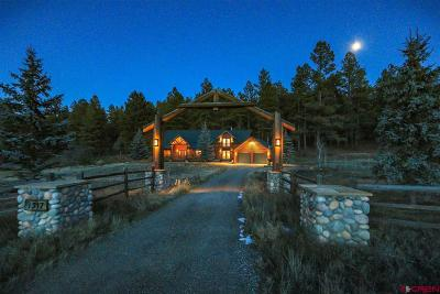 Pagosa Springs Single Family Home For Sale: 1317 Eight Mile Loop