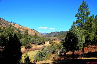 Mancos Residential Lots & Land For Sale: 5136 Road 46