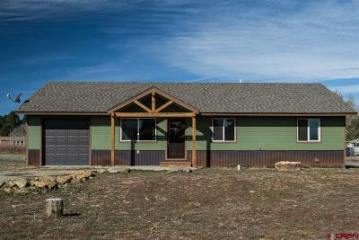 Pagosa Springs Single Family Home For Sale: 75 Settler Drive