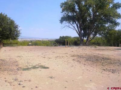 Delta Residential Lots & Land For Sale: Spring Drive