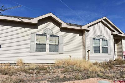 Single Family Home NEW: 10631 Road 2