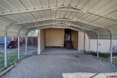 Mancos Single Family Home For Sale: 896 2nd Avenue