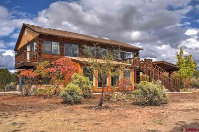Mancos Single Family Home For Sale: 12095 Road 32