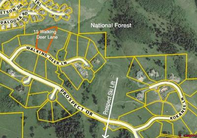 Residential Lots & Land For Sale: 15 Walking Deer Lane
